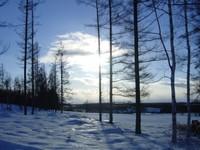 Northernlights_1